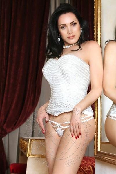 Reina Sofia  CATANZARO 3473967072
