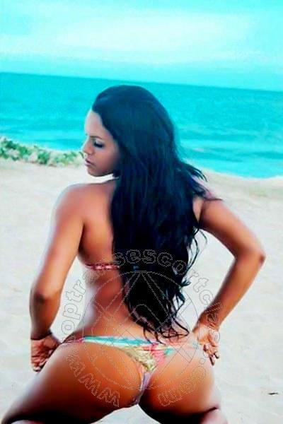 Serena Hot  PRATO 3397412411