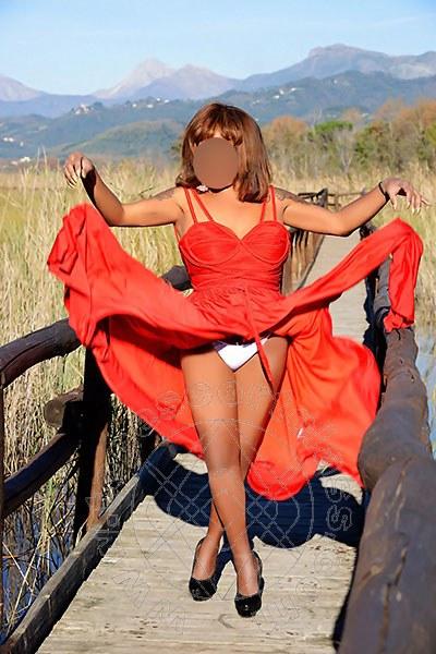 Paula Glamour  MASSA 3333401429